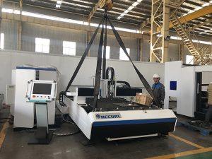 Cina pabrik lencana mesin pemotong + pemotong laser serat dipertukarkan